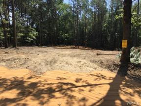 Property for sale at 17679 HAYES Road 5, Northport,  Alabama 35476