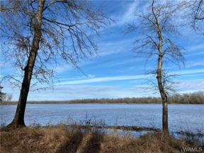 Property for sale at 110 Black Warrior Bay, Akron,  Alabama 35441