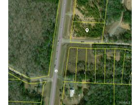 Property for sale at 16005 HWY 43 N, Northport,  AL 35475