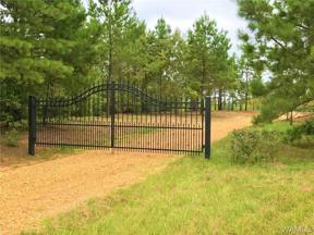 Property for sale at 00 HWY 69 N, Northport,  AL 35475