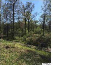 Property for sale at 20310 HWY 216 A, Mccalla,  AL 35111
