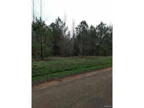 Property for sale at 0 Sandy Fork Circle, Moundville,  Alabama