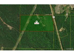 Property for sale at 00 Hwy 69 S, Moundville,  AL 35474