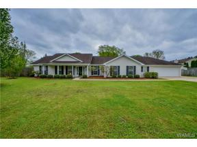 Property for sale at 18487 Mindy Valley Road, Vance,  Alabama 35490