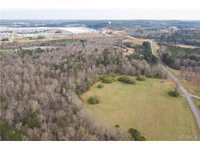 Property for sale at 0 Tingle Tangle Road, Vance,  Alabama 35490