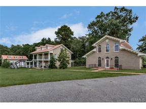 Property for sale at 15466 SHEPHARD PARK Road, Knoxville,  AL 35463