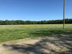 Property for sale at Moundville,  AL 35474