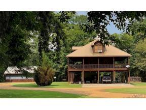 Property for sale at 13775 Riverbend Road, Moundville,  Alabama 35474