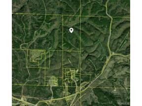 Property for sale at 17048 Hannah Creek Road, Brookwood,  AL 35444