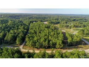 Property for sale at 15214 Ridgeland Drive, Brookwood,  AL 35444