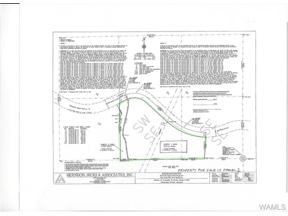 Property for sale at 0 LOCK 17 Road, Northport,  AL 35475