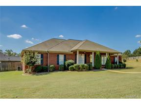 Property for sale at 13931 Willow View Lane, Northport,  AL 35475