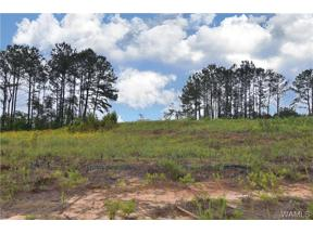 Property for sale at 00 Don Anderson Parkway, Brookwood,  AL 35444
