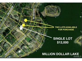 Property for sale at 0 BEL-AIR CIR, Lake View,  AL 35111