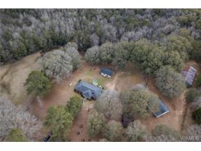 Property for sale at 15038 Northside Road, Northport,  Alabama 35475