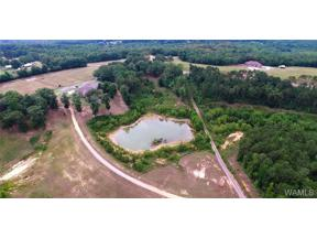 Property for sale at 00 BOOTHTOWN Road, Buhl,  AL 35446