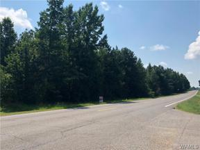 Property for sale at 0 Hwy 43 N, Northport,  AL 35475