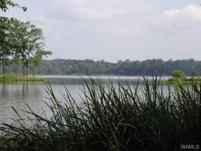 Property for sale at 495 Black Warrior Bay, Akron,  Alabama 36776
