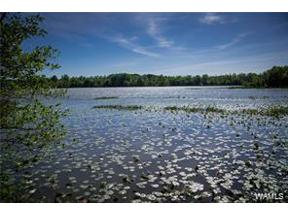 Property for sale at 16113 Carmel Bay Drive, Northport,  Alabama 35475