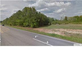 Property for sale at 000 HWY 43, Northport,  AL 35475