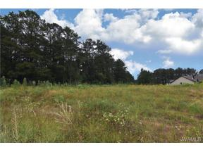 Property for sale at 15504 Don Anderson Parkway, Brookwood,  AL 35444