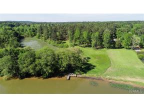 Property for sale at 17060 Hayes Road, Northport,  AL 35475