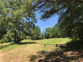 Property for sale at 01 LEE BONNER Road, Northport,  AL 35457