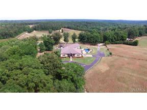 Property for sale at 16552 BOOTHTOWN Road, Buhl,  AL 35446