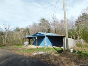 Property for sale at 0 Beulah Lake Lane, Cottondale,  AL 35453
