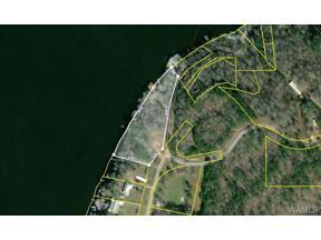 Property for sale at 13290 WOODROSE Drive, Brookwood,  Alabama 35444