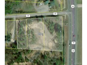 Property for sale at 0 HIGHWAY 43 N, Northport,  Alabama 35473