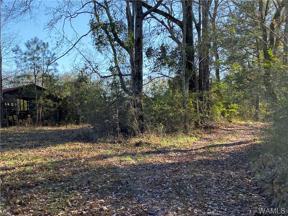 Property for sale at 0 Lewis Street, Centreville,  Alabama 35042
