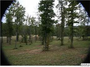 Property for sale at 11816 SHADES CREEK Drive, Cottondale,  Alabama 35453