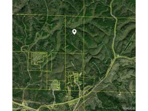 Property for sale at 17048 Hannah Creek Road, Brookwood,  Alabama 35444