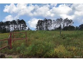 Property for sale at 0 Don Anderson Parkway, Brookwood,  AL 35444