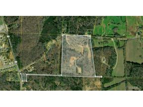 Property for sale at 000 Jim Jones Road, Cottondale,  Alabama 35453