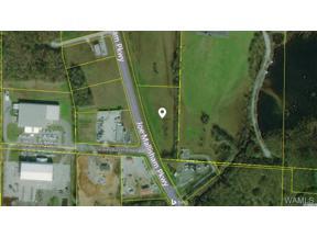 Property for sale at 0 Joe Mallisham Parkway, Tuscaloosa,  AL 35404