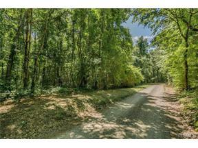 Property for sale at 0 Trion Lane, Vance,  Alabama 35490