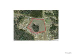 Property for sale at 1000 MITT LARY Road, Northport,  AL 35476