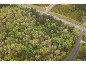 Property for sale at 00 Hwy 43 N, Northport,  AL 35475