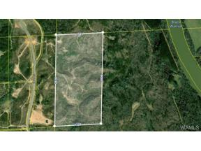 Property for sale at 0 Sand Road, Fosters,  Alabama 35463