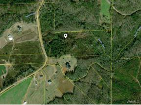 Property for sale at 000 Bill Lunceford Road, Berry,  AL 35446