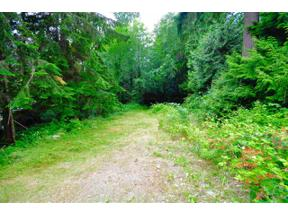 Property for sale at 1519 HENDERSON Avenue, Roberts Creek,  British Columbia V0N 2W2