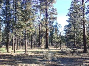 Property for sale at 0 Erwin Ranch Road, Big Bear City,  California 92314