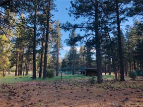 Property for sale at 1197 Mitchell Lane, Big Bear City,  California 92314