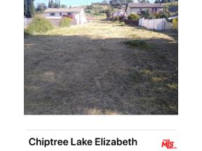 Property for sale at 0 Chiptree Drive, Elizabeth Lake,  California 93532