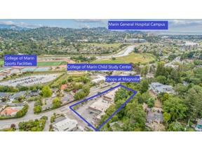 Property for sale at 1141 Magnolia Avenue, Larkspur,  California 94939