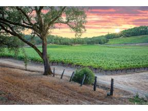 Property for sale at 1450 Ridge Oaks Road, Geyserville,  California 95441