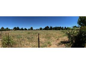 Property for sale at 0 Blevin Road, Yuba City,  CA 95993