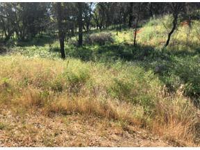 Property for sale at 12499 Loma Rica Road, Loma Rica,  California 95901